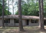 Foreclosed Home in Gainesville 32653 NW 29TH ST - Property ID: 3956292411