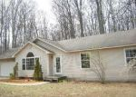 Foreclosed Home in Traverse City 49684 JACKS TRL - Property ID: 3956475935