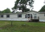 Foreclosed Home in Lumberton 77657 ASH ST - Property ID: 3959668312