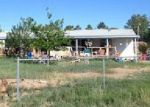 Foreclosed Home in Pahrump 89060 LANDMARK AVE - Property ID: 3970837985