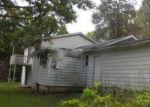 Foreclosed Home in Gobles 49055 30 1/2 ST - Property ID: 3973291948
