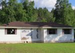 Foreclosed Home in Hazlehurst 31539 WOODARD LN - Property ID: 3973445671