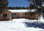 Foreclosed Home in Florissant 80816 SILBANI LN - Property ID: 3974346128
