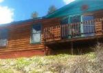 Foreclosed Home in Woodland Park 80863 COUNTY ROAD 782 - Property ID: 3974841484
