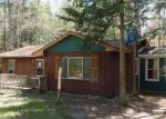 Foreclosed Home in Indian River 49749 RED PINE DR - Property ID: 3977172385