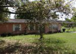 Foreclosed Home in Lakeland 33810 CHART PRINE RD - Property ID: 3979538770