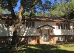 Foreclosed Home in Anoka 55303 10TH AVE - Property ID: 3988256186
