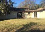 Foreclosed Home in Wauchula 33873 HAWAIIAN DR - Property ID: 3991700420