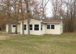 Foreclosed Home in Newaygo 49337 2 MILE RD - Property ID: 3992357380