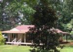 Foreclosed Home in Waynesboro 22980 OLD HERMITAGE RD - Property ID: 3993746637
