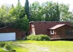 Foreclosed Home in Bigfork 56628 COUNTY ROAD 312 - Property ID: 3999954929