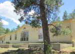 Foreclosed Home in Cotopaxi 81223 G PATH - Property ID: 4000476545