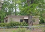 Foreclosed Home in Kountze 77625 BRYAN LN - Property ID: 4008383285