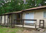 Foreclosed Home in East Stroudsburg 18302 LILY RD - Property ID: 4009268433
