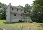 Foreclosed Home in East Stroudsburg 18302 MOHICAN RD - Property ID: 4009281127