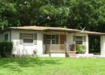 Foreclosed Home in Valrico 33594 MORNINGSIDE DR - Property ID: 4011019902