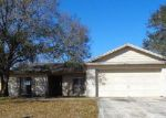 Foreclosed Home in Riverview 33569 HOLLOWBEND LN - Property ID: 4012701268