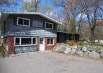 Foreclosed Home in Rhinelander 54501 BIRCH LN - Property ID: 4013286852