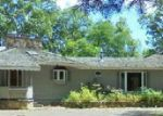 Foreclosed Home in Hayward 54843 N BALSAM RD - Property ID: 4013299549