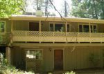 Foreclosed Home in Garden Valley 95633 SLODUSTY RD - Property ID: 4016924212