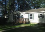 Foreclosed Home in Chippewa Lake 49320 MERRITT AVE - Property ID: 4017514164