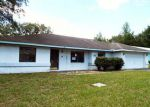 Foreclosed Home in Dunnellon 34434 N ASHBURY DR - Property ID: 4017843979
