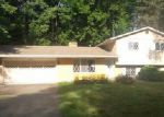 Foreclosed Home in Fort Gratiot 48059 STATE RD - Property ID: 4019128543