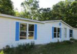 Foreclosed Home in White Cloud 49349 S NICHOLAS AVE - Property ID: 4019227526