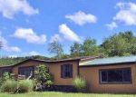 Foreclosed Home in Christiansburg 24073 PLUM CREEK RD - Property ID: 4022889873