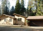 Foreclosed Home in Trinity Center 96091 BILLYS PEAK DR - Property ID: 4024653141