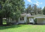 Foreclosed Home in Plant City 33563 OAKLAND HEIGHTS AVE - Property ID: 4024769651