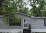 Foreclosed Home in Newaygo 49337 W COUNTYLINE RD - Property ID: 4027811825