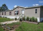 Foreclosed Home in Bronson 32621 NE 116TH ST - Property ID: 4034928902