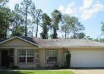 Foreclosed Home in Palm Coast 32164 LLEBERRY PATH - Property ID: 4037683306