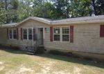 Foreclosed Home in Pell City 35128 TURTLE ROCK RD - Property ID: 4037796752