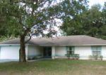 Foreclosed Home in Palm Coast 32164 PERROTTI LN - Property ID: 4042144963