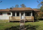 Foreclosed Home in Pioneer 37847 STRAIGHT FORK RD - Property ID: 4042742348