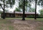 Foreclosed Home in Conway 72034 TIMBERPEG CT - Property ID: 4044080806