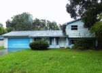 Foreclosed Home in Valrico 33594 LADY ELAINE DR - Property ID: 4044185467