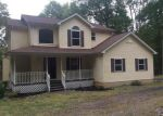 Foreclosed Home in East Stroudsburg 18301 NORTH LN - Property ID: 4044485936