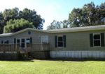 Foreclosed Home in Lakeland 33810 QUAIL TRL - Property ID: 4049616797