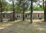 Foreclosed Home in Lindale 75771 PLUM DR - Property ID: 4050383235