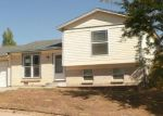 Foreclosed Home in Denver 80229 E 96TH WAY - Property ID: 4051751471