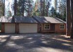 Foreclosed Home in Grizzly Flats 95636 GOLDEN ASPEN - Property ID: 4051808407