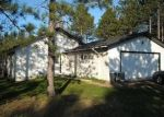 Foreclosed Home in Bagley 56621 LOMOND DR NW - Property ID: 4056321737
