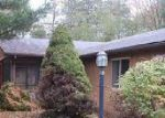 Foreclosed Home in Bancroft 48414 E COLE RD - Property ID: 4063035428