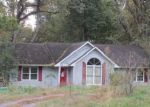 Foreclosed Home in Kevil 42053 BROOKING RD - Property ID: 4064854341