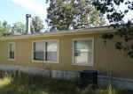 Foreclosed Home in Onalaska 77360 W OAK LEE DR - Property ID: 4070658367