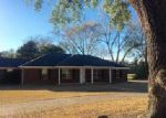 Foreclosed Home in Bay Minette 36507 CLIFFS LANDING RD - Property ID: 4071384987