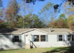 Foreclosed Home in Gladewater 75647 WADY LN - Property ID: 4074602321